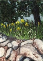Rock Wall with Yellow Iris - Print
