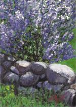 Lilac Rock Wall - Print