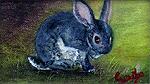 Clean Bunny