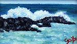 Rocky Surf