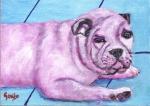 Bulldog Bruiser
