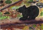 Balanced Bear